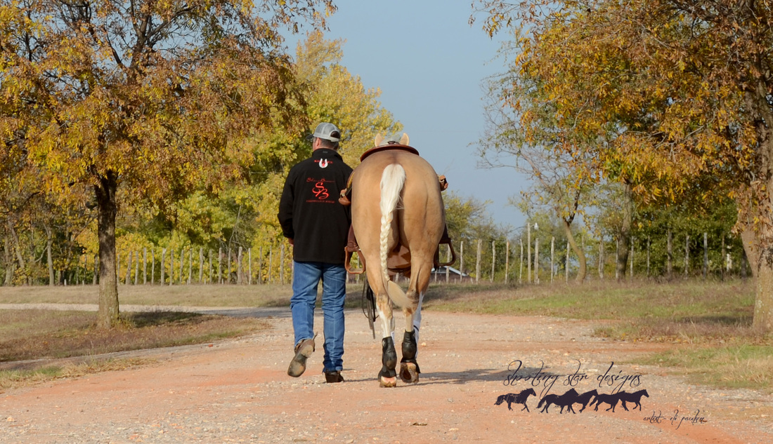 Here at Shane Brown Performance Horses we believe that it not only takes a dynamic head trainer and an exceptional assistant trainer to make a successful business, it also takes a winning team of family support and incredible clientele. Without all of these individual ingredients we simply wouldn't be here! We share our success and our determination with the finest selection of non-pros and the most supportive family in the state.